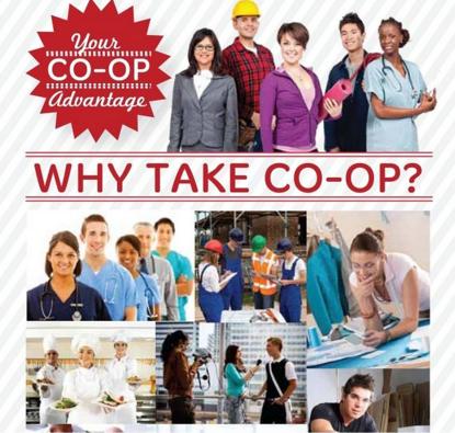 Chương trình thực tập Co-op